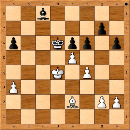 The final position from game 8 of the 2014 World Chess Championship.
