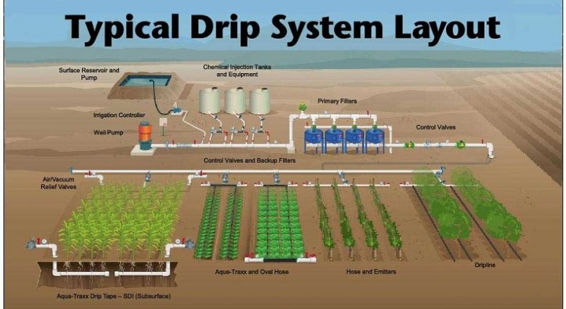 Drip Irrigation – Types, Advantages And Disadvantages