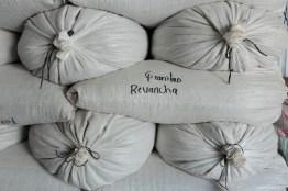 early-harvest-production-from-La-Revancha