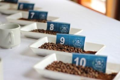 InConexus coffee samples