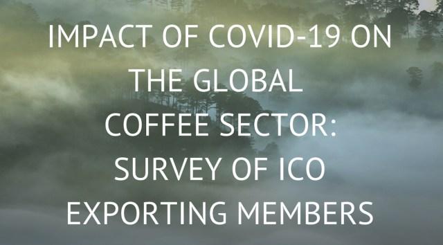 ICO Impact report