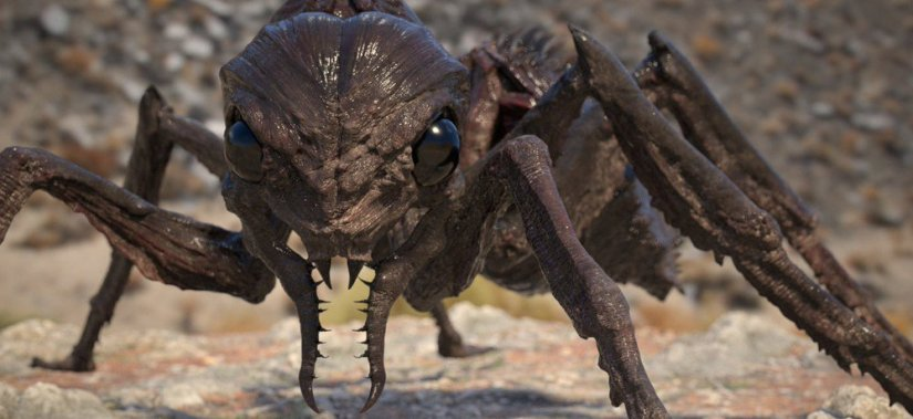 Image result for giant ants