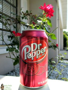 Dr Pepper® #SummerFUNd Sweepstakes