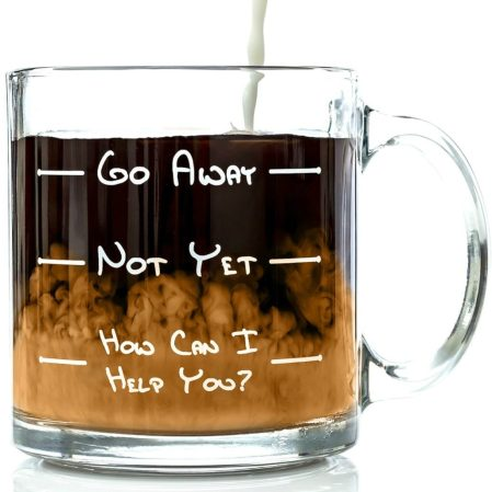 Go Away Funny Glass Coffee Mug
