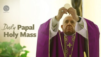 Photo of Daily Mass by Pope Francis 6th May 2020 Wednesday at Vatican