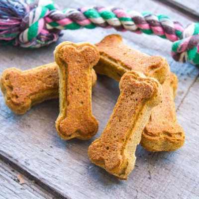 Pumpkin Peanut Butter Dog Treats – Wheat-Free