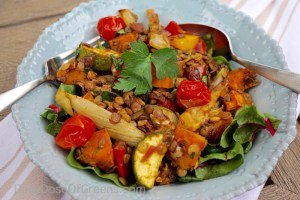 Lentil Salad w/ Roasted Vegetables