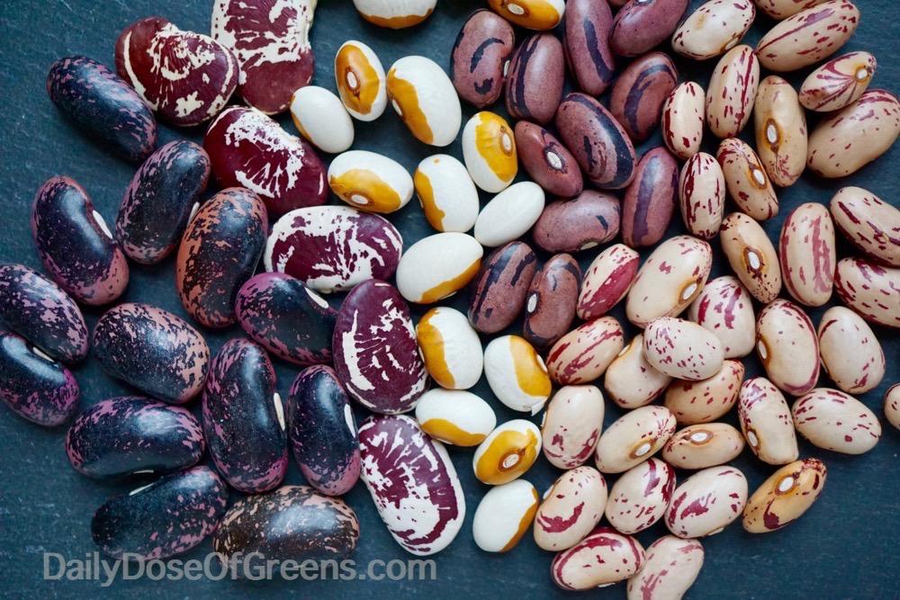 legumes, beans