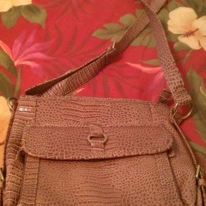 Crossbody Bag: Front View