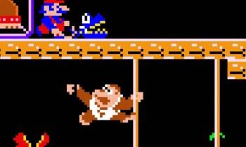 Donkey Kong Jr. - (C) Nintendo