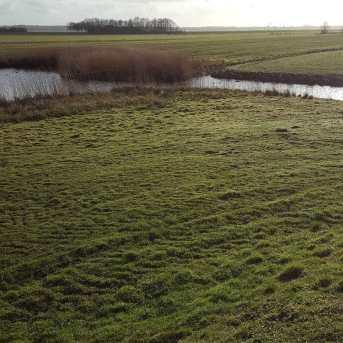 Klompenpad Eemnes polder