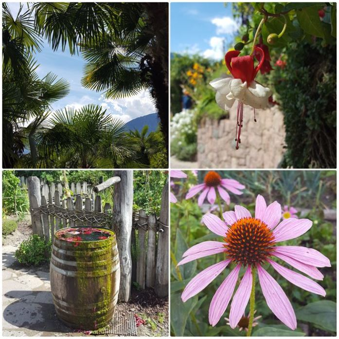 gardens of Trauttmansdorff Castle Dailygreenspiration