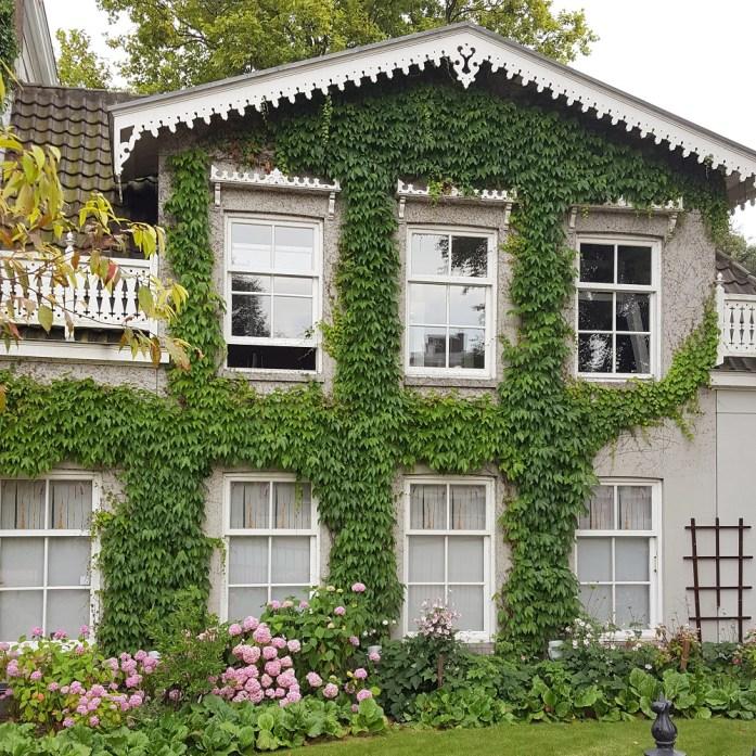 Botanic Garden Amsterdam