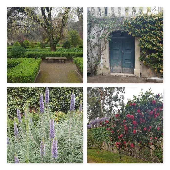 coimbra jardim botanico