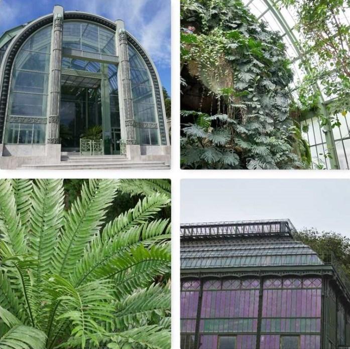 Jardin des Plantes Green Paris