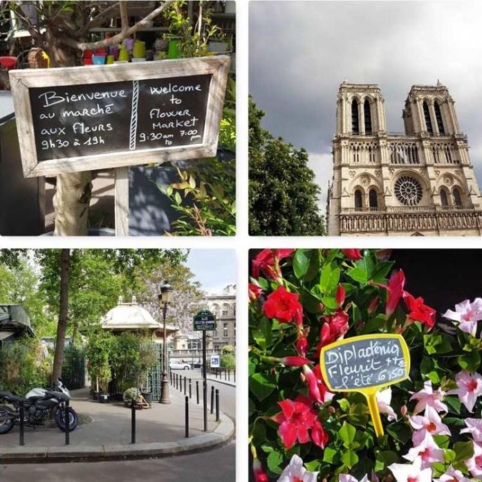 Ile de la Cité Green Paris