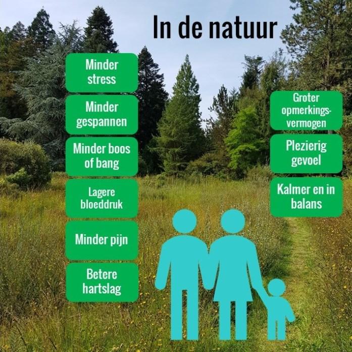 de natuur