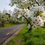 Zuidwest Drenthe