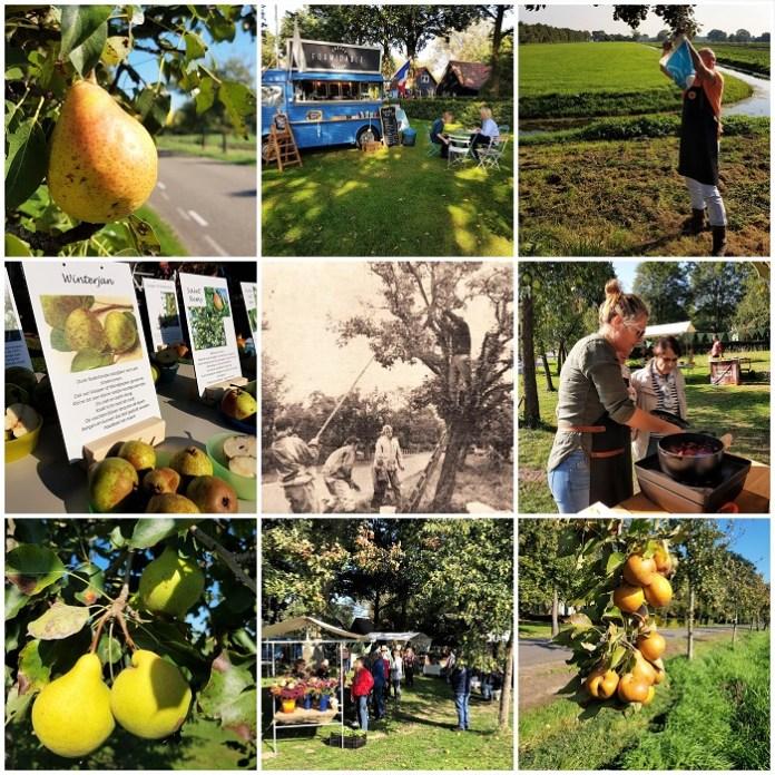 Appels en peren oogsten