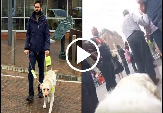 Blind Man Straps Camera To Guide Dog's Back. When Wife Sees Video Later She's Horrified [VIDEO]