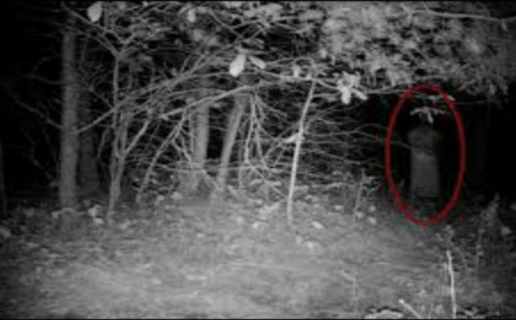 Rape Victim Frantically Emerges From Woods, No One Can Believe What's In Her Hand