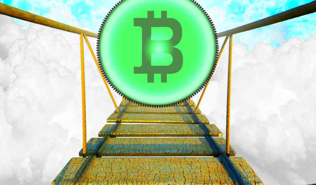 Bitcoin Market Cap Will Likely Never Dip Below ,000,000,000,000, Says On-Chain Analyst Willy Woo