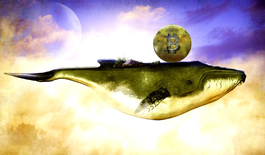 Giant Crypto Whale Emerges, Moving 3,000,000 in Bitcoin in an Instant – Here's Where the Crypto Is Now