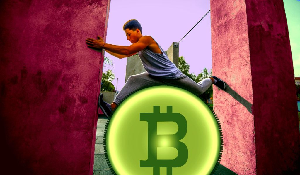 Bitcoin Dip Just Another Shakeout Event, According to On-Chain Analyst