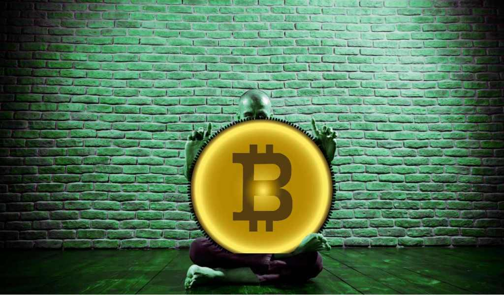 Got Bitcoin? NBA's Brooklyn Nets Considering BTC Payment Options