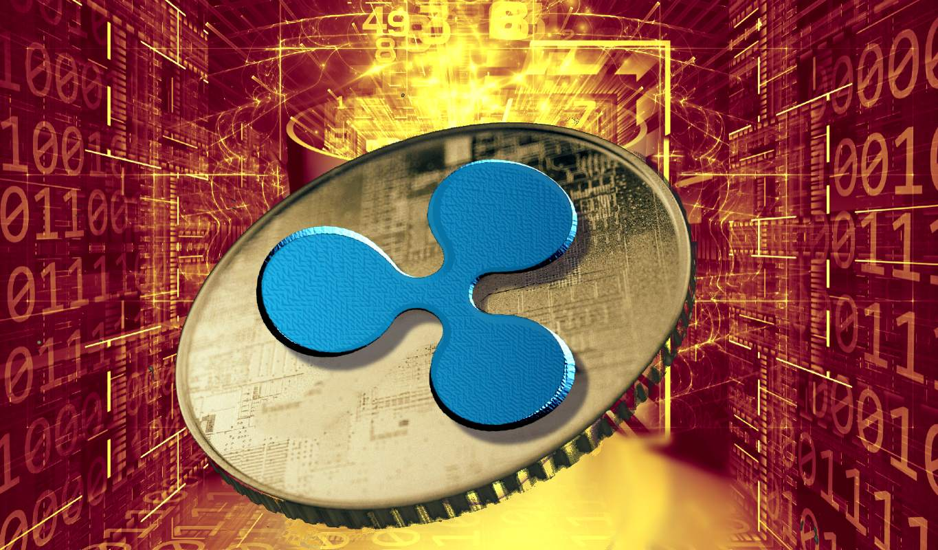 Ripple Looks to the Future With Groundbreaking IPO Following the Settlement of the SEC Lawsuit   The Daily Hodl