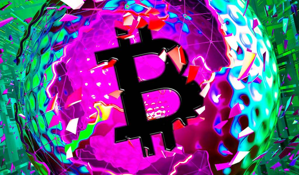 Whole Bitcoin Ecosystem Flashing Signs of Bullishness, According to On-Chain Analyst Willy Woo