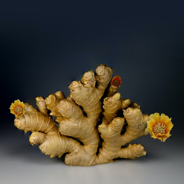 ginger is also a very common friend which can boost your immune system.