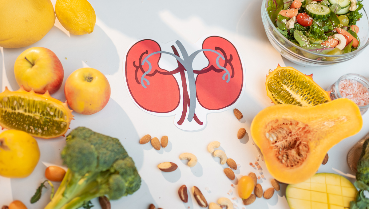 Can A Person Live A Healthy Life With One Kidney? Care Tips For People With A Single Kidney 1 - Daily Medicos