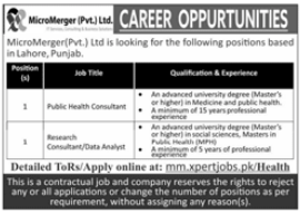 Public Health Consultant Job in MicroMerger Pvt. Ltd (Lahore) 2 - Daily Medicos