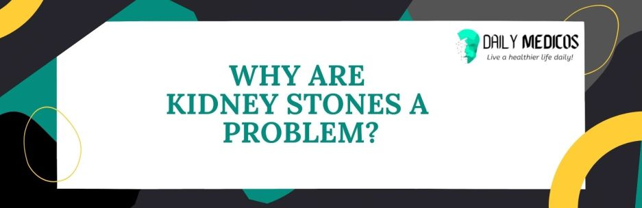 Kidney Stones; Symptoms, Causes, Types of Stones, Treatment, and Preventions 10 - Daily Medicos