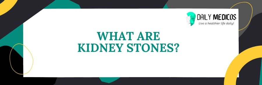 Kidney Stones; Symptoms, Causes, Types of Stones, Treatment, and Preventions 2 - Daily Medicos