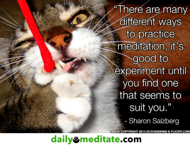 """""""There are many different ways to practice meditation; it's good to experiment until you find one that seems to suit you."""" – Sharon Salzberg"""