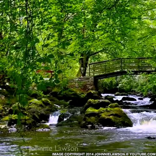 Free Nature Sounds at DailyMeditate.com