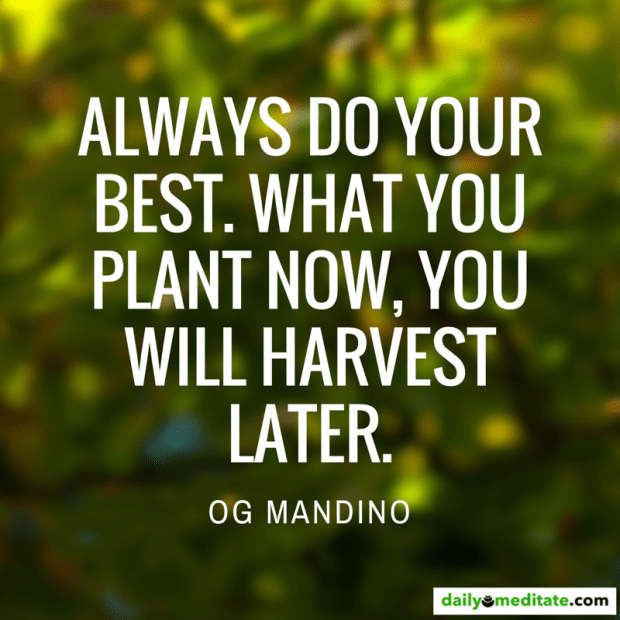 """""""Always do your best. What you plant now, you will harvest later."""" Og Mandino"""