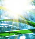 Rain Sounds For Meditation