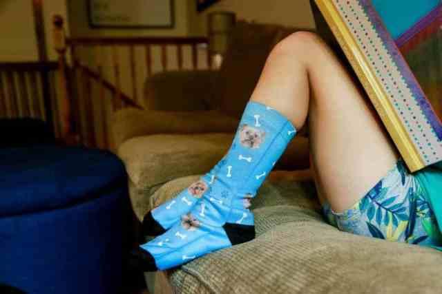 pet-socks-dog-2