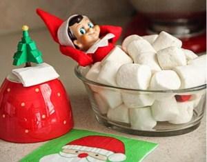 December fun!  Christmas season traditions.