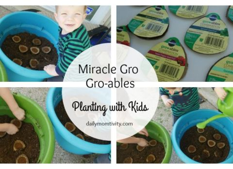 Miracle Gro-ables is the perfect activity to do with kids! #ad #GrowableProject