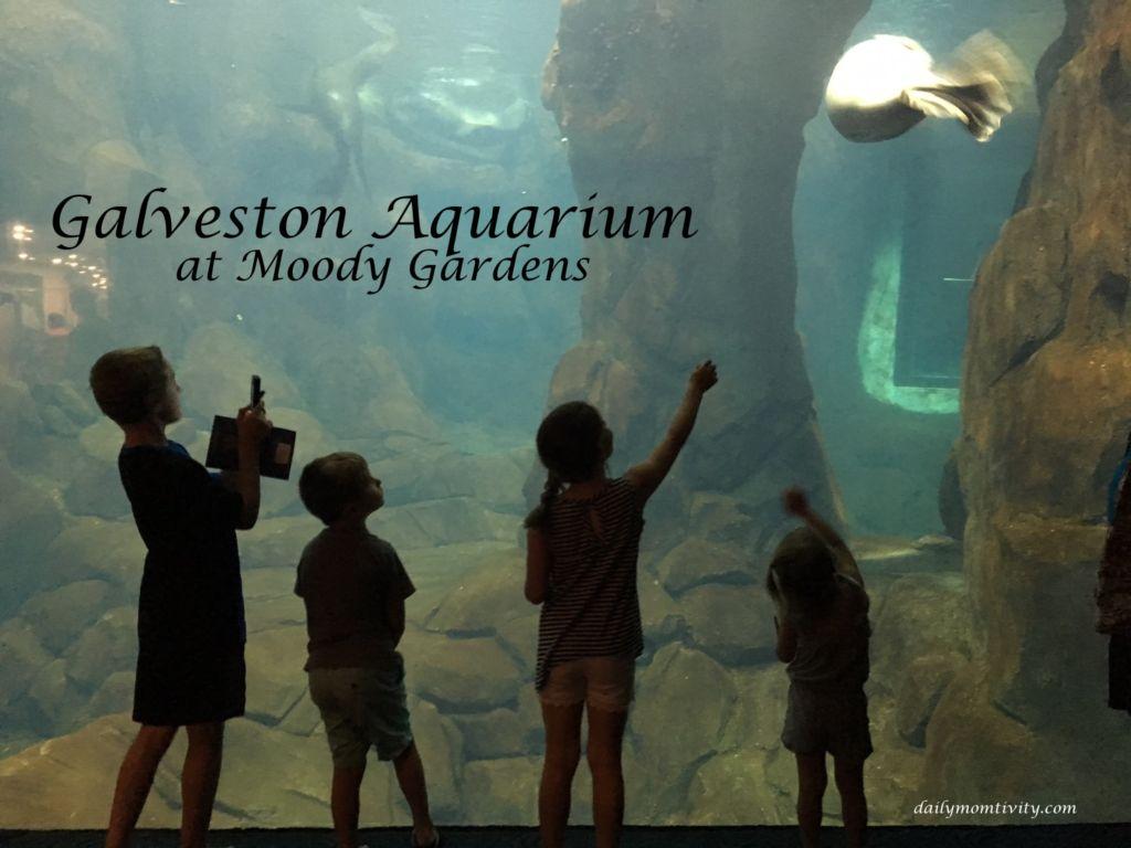 Galveston Aquarium at Moody Gardens