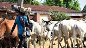 Ogun community raise alarm over influx of herdsmen from Oyo state…