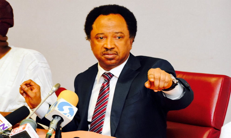 Senators Hunkuyi, Shehu Sani set to dump APC
