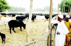 President Muhammadu Buhari with his storekeeper/farm manager Alhaji Habu Sarkin-Fulani at his farm in Daura.