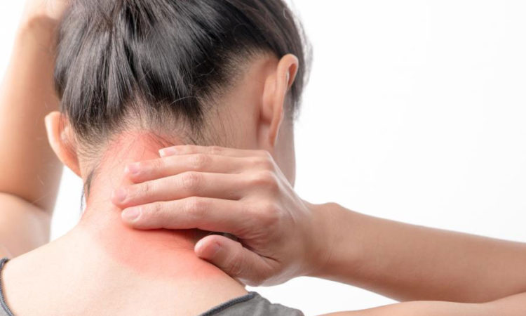 """A Recent Study Shows That """"Pycnogenol"""" Relives The Symptoms Of Fibromyalgia"""