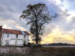 Disparities In Rural Health Care: What Can Be Done?