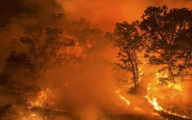 امریکہ کے جنگلات میں لگی آگ بے قابو، 33 افراد ہلاک ، درجنوں لاپتہ، 46 لاکھ ایکڑ خاکستر